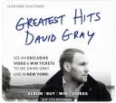 david grey